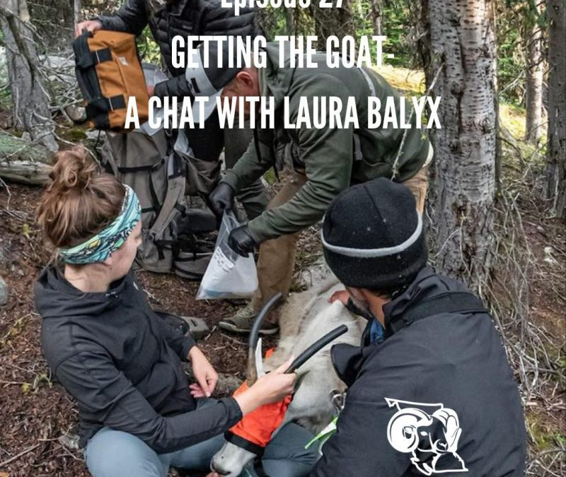 EP: 27 – Getting the Goat with Laura Balyx
